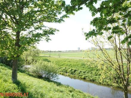 Wohnen am Liesingbach - reizendes Haus am Stadtrand + Garage, kleiner Garten und gute Verkehrsanbindung!
