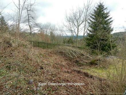 Freier Blick in den Pfälzer Wald, sonniger Bauplatz mit Randlage! Carlsberg