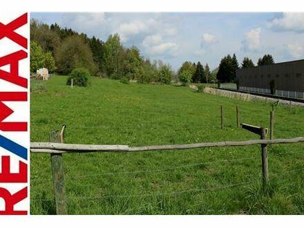 REMAX - Herrliches Grundstück mit 13.552m² in Ochsenhausen zu verkaufen!