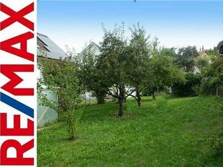 REMAX - Wohnbaufläche für 2 EFH in Gerhausen