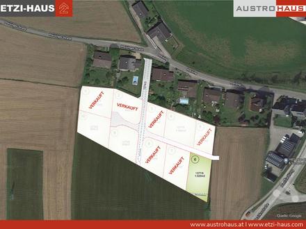 Nur mehr 1 Grundstück + Haus in Regau ab € 367.266 verfügbar