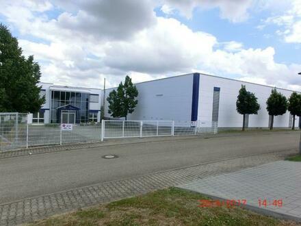 Sinsheim-Moderne Hallenfläche mit Büro-und Sozialräumen (auch teilbar)