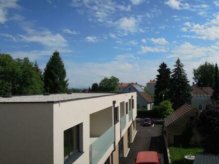 Sehr schöne 2 Zimmer-Wohnung mit Terrasse