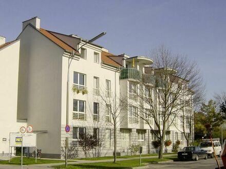 Wr. Neustadt. Geförderte 3 Zimmer Wohnung | Miete mit Kaufrecht.