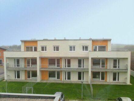 Palterndorf. Geförderte 3 Zimmer Wohnung   Loggia   Miete mit Kaufrecht.