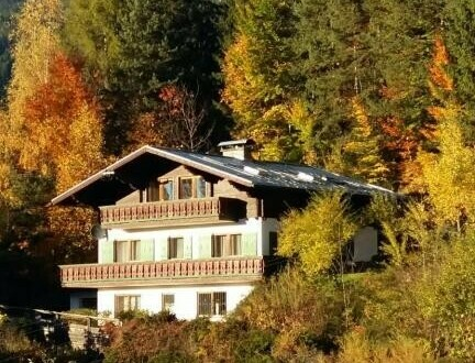 Haus mit Waldgrundstück.
