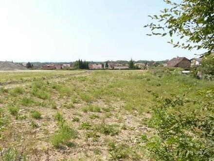 Grundstücke Langenstein