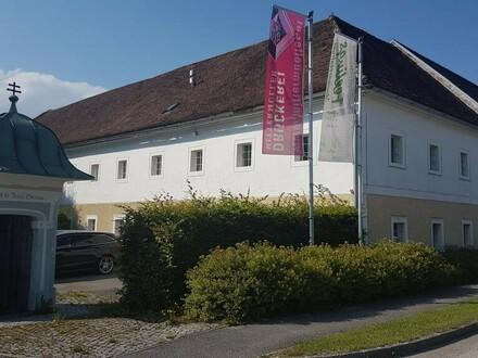 Büro- und Ausstellungsfläche