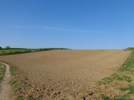 Landwirtschaftlicher Nutzgrund (Acker)