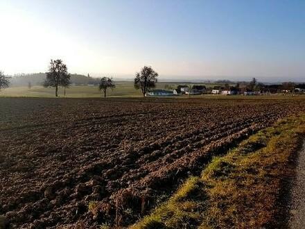 Grundstücke Arbing