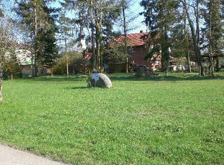 Grundstück mit Baumbestand