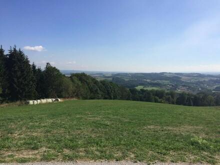Tolle Lage nähe Linz! Alter Vierkanthof, stark sanierungsbedürftig und landwirtschaftliche Flächen