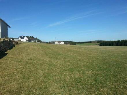 Nur noch 5 Baugründe im Erholungsdorf Liebenau