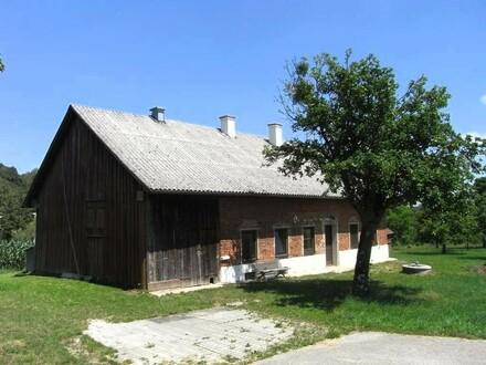 Sanierungsbedürftiges Haus mit großem Grundstück!