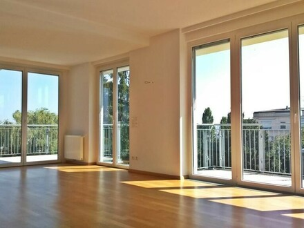 Luxus Terrassenapartment mit Wienblick