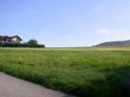 Grundstück von Siedlungsstraße