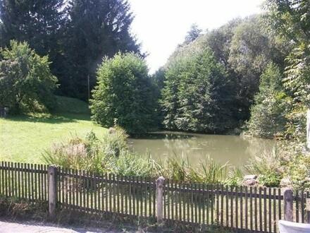 Baugrund mit Teich