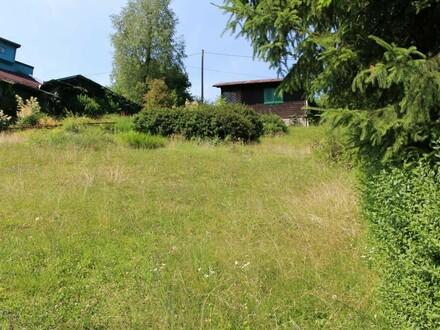 Baugrundstück mit Blockhütte