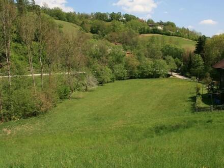 Wunderschönes Grundstück im Grünen perfekt für Naturliebhaber