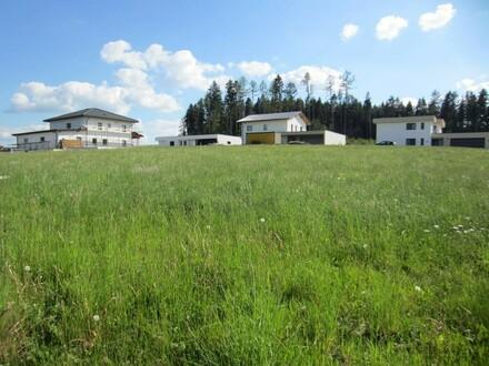 Schönes Baugrundstück in ruhiger Wohnsiedlung