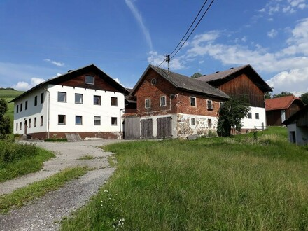 Bauernhof mit Nebengebäude und LW-Nutzgrund