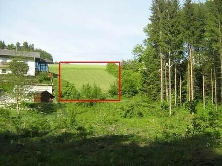 Baugrundstück mit Grünlandanteil in sonniger, ruhiger Lage im kleinen Rodltal