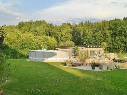 Garten, Pool und Gartenhaus