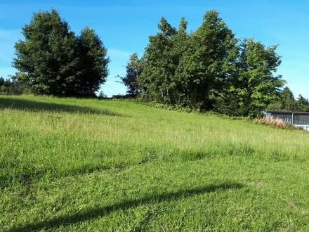 Mischbaugrund in Zentrumsnähe von Liebenau