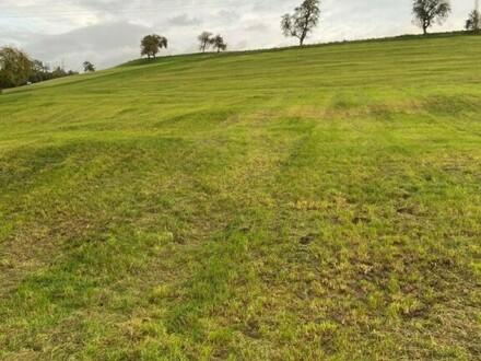 Landwirtschaftliche Fläche (Äcker, Wiesen, Weiden)
