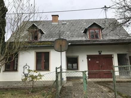Bastlerhaus mit schönem Grundstück