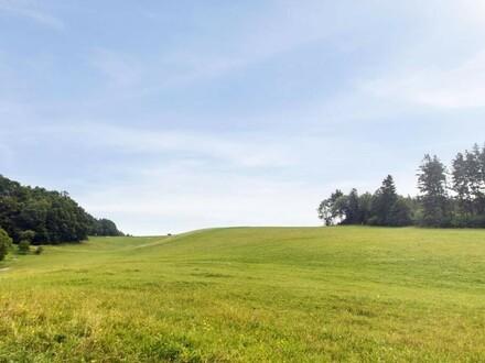 """Baulandprojekt """"Wolfsegg-Kühnberg"""""""
