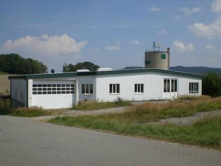 Produktions- oder Lagerhallen, sofort verfügbar!
