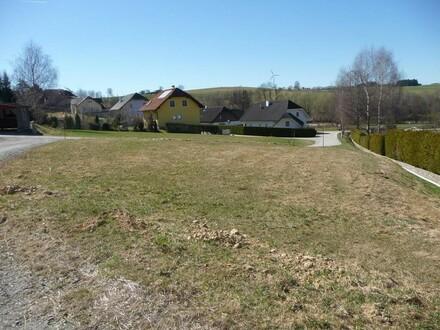 Sonniger Baugrund in Siedlungslage