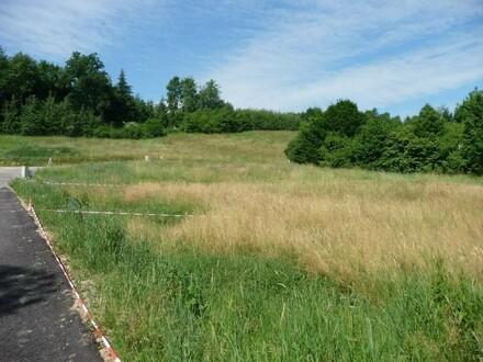 3 Baugrundstücke in Engerwitzdorf und Gallneukirchen
