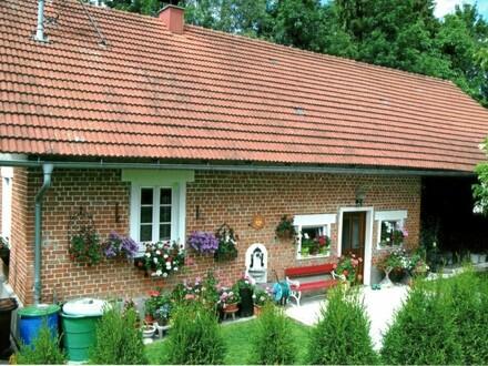 Schmuckes Häuschen mit landwirtschaftlichem Grund