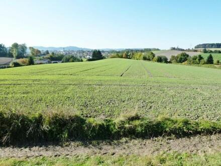Landwirtschaftlicher Nutzgrund