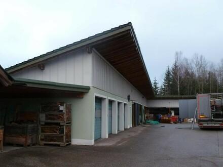 Betriebsareal mit sehr schönem Wohnhaus