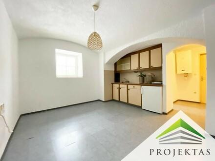 Kleine 1 Zimmerwohnung mit Kochnische am Linzer Auberg