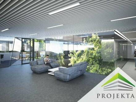Innovative Bürolösungen im Mühlviertel: CONSENTO Vision Park (Provisionsfrei!)