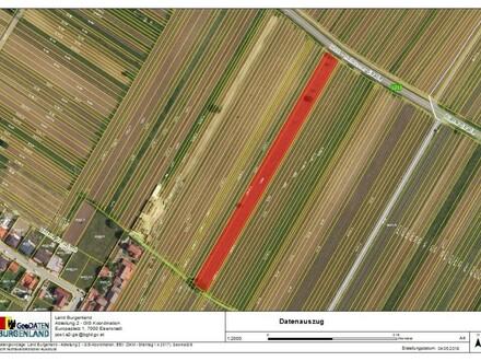 5.400 m² Weinbau