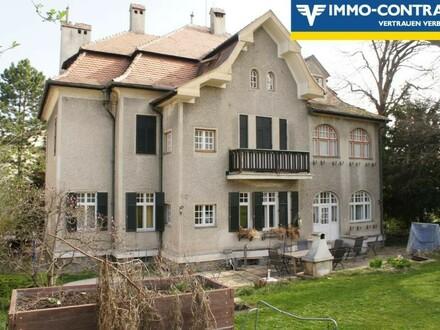 Rohdachboden in Hietzinger Villa