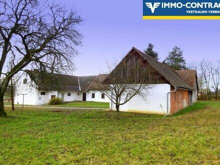 Bauernhof mit schönem idyllischem Grund - Pferdehaltung erlaubt