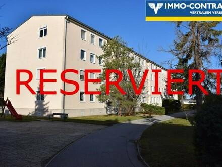 Helle 2-3Zi. Wohnung mit Fernblick in Bruck zu vermieten (2 halbe MM gratis)