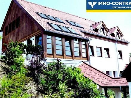 Architekten-Villa mit eigenem Ordinationsgebäude
