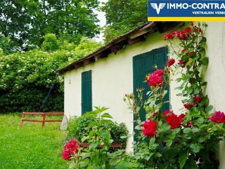 Büro, Wohnungen und Nebenflächen - bestandsfrei