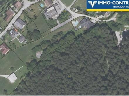 Direkt am Waldrand: unbebautes Wiesengrundstück Parzelle 105/3