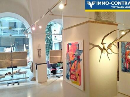 Modernes barrierefreies Geschäft für Galerie-Kunst-Schmuck-Antiquitätenhandel