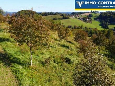 Baugrund mit Ausblick und großer Nussbaumplantage im sonnigen Südburgenland!