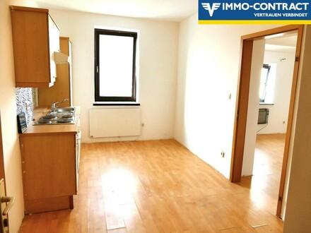 Neu sanierte Wohnung im Zentrum von Güssing