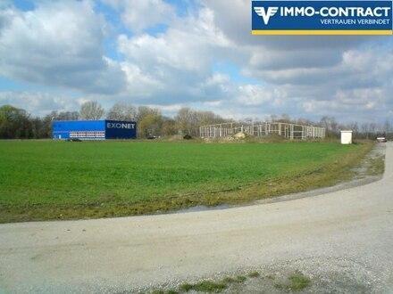 Industriebaugrund, teilbar, mit Rohbauhalle